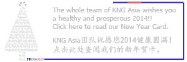 KNG Asia, China, trating,consulting,neayear 2014