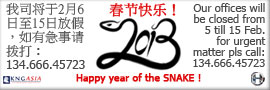 Chinese year of the snake business
